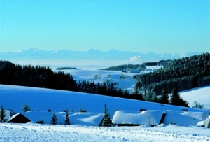Wintersport-Informationen aus Herrischried